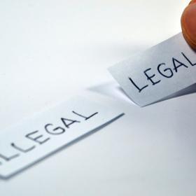 Legalise DNA testing in France