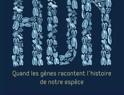 ADN. Quand les gènes racontent l'histoire de notre espèce