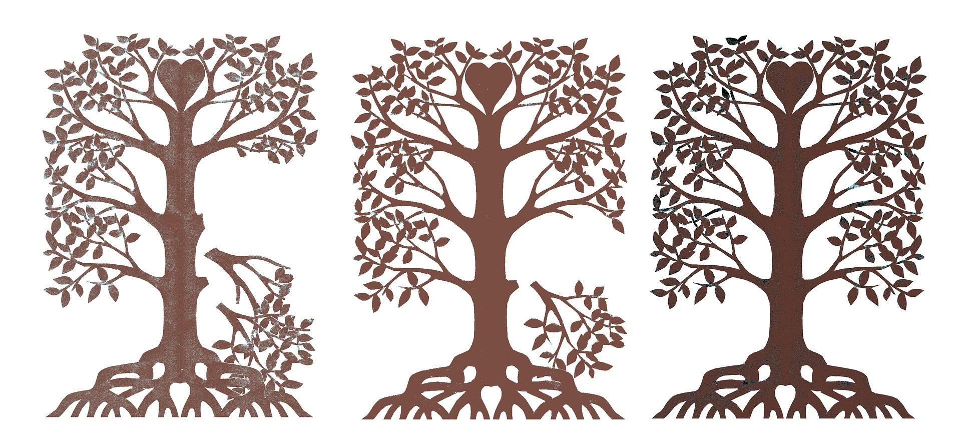 Une branche coupée dans votre arbre généalogique ?